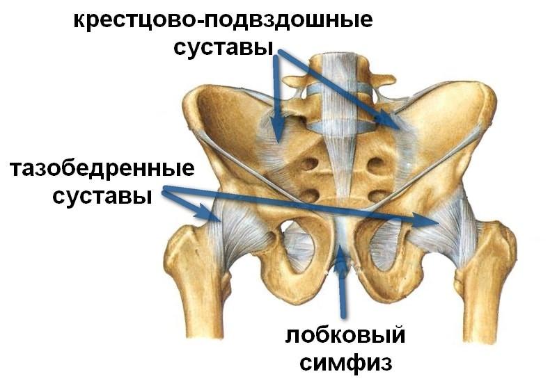 Jalgrattasoit valus liigesed, et see voib olla Valus liigese jalgade kohal, mis see on