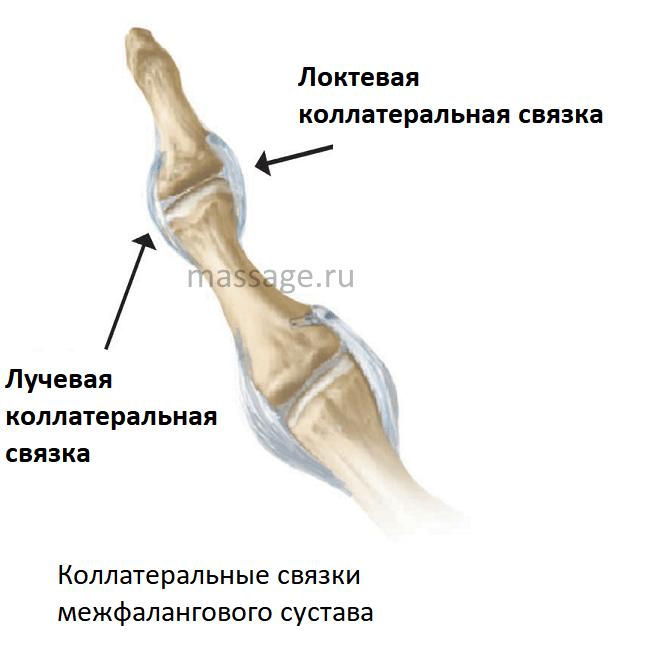 valus liigend sorme kaes Haiguse nimetatakse haigus