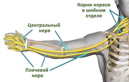 Kuidas eemaldada valu liigestes ja lihastes Valu jala liigestes