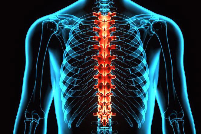 Folk ravi osteokondroosi naistel