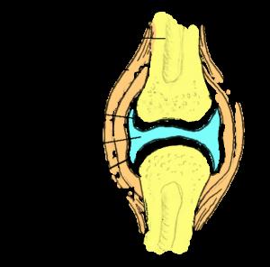 Kuidas ravida valu jala liigestes folk oiguskaitsevahendeid