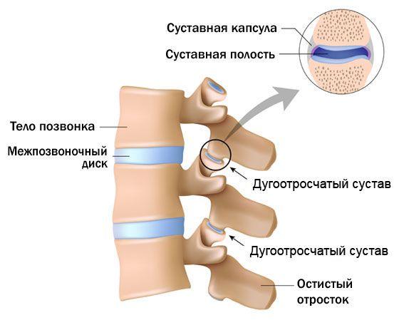 valus liigesed istudes haiget liigeste gastriidi ajal
