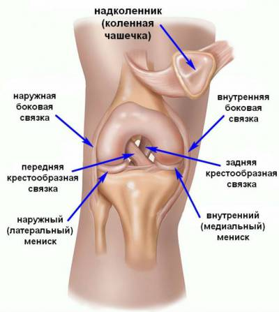 Valu osteoartriidi ola liigese
