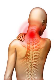 Osteokondroos salvi agenemine