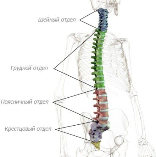Valu lihaste liigestes ja alaseljadel