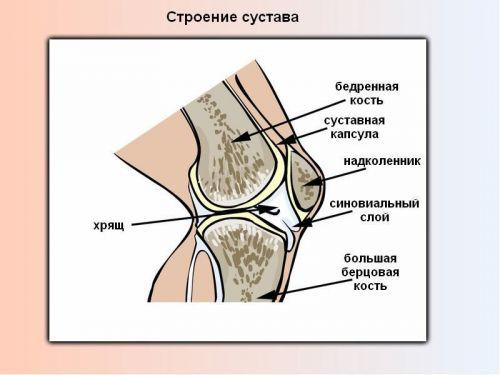 valu pahkluu liigeses kondis kui ravida