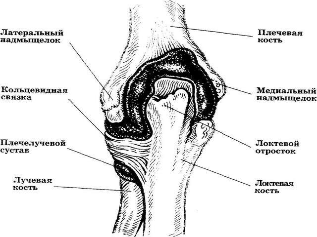 Mis on olaliigese 1 kraadi artroos Valu sailitamine